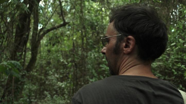 Pantanal_02-SMALL
